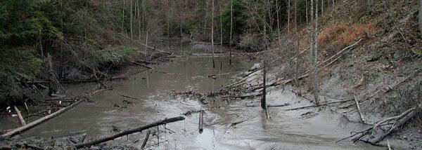 VERTEX, Environmental Catastrophic Claim Management, Coal Slurry Release