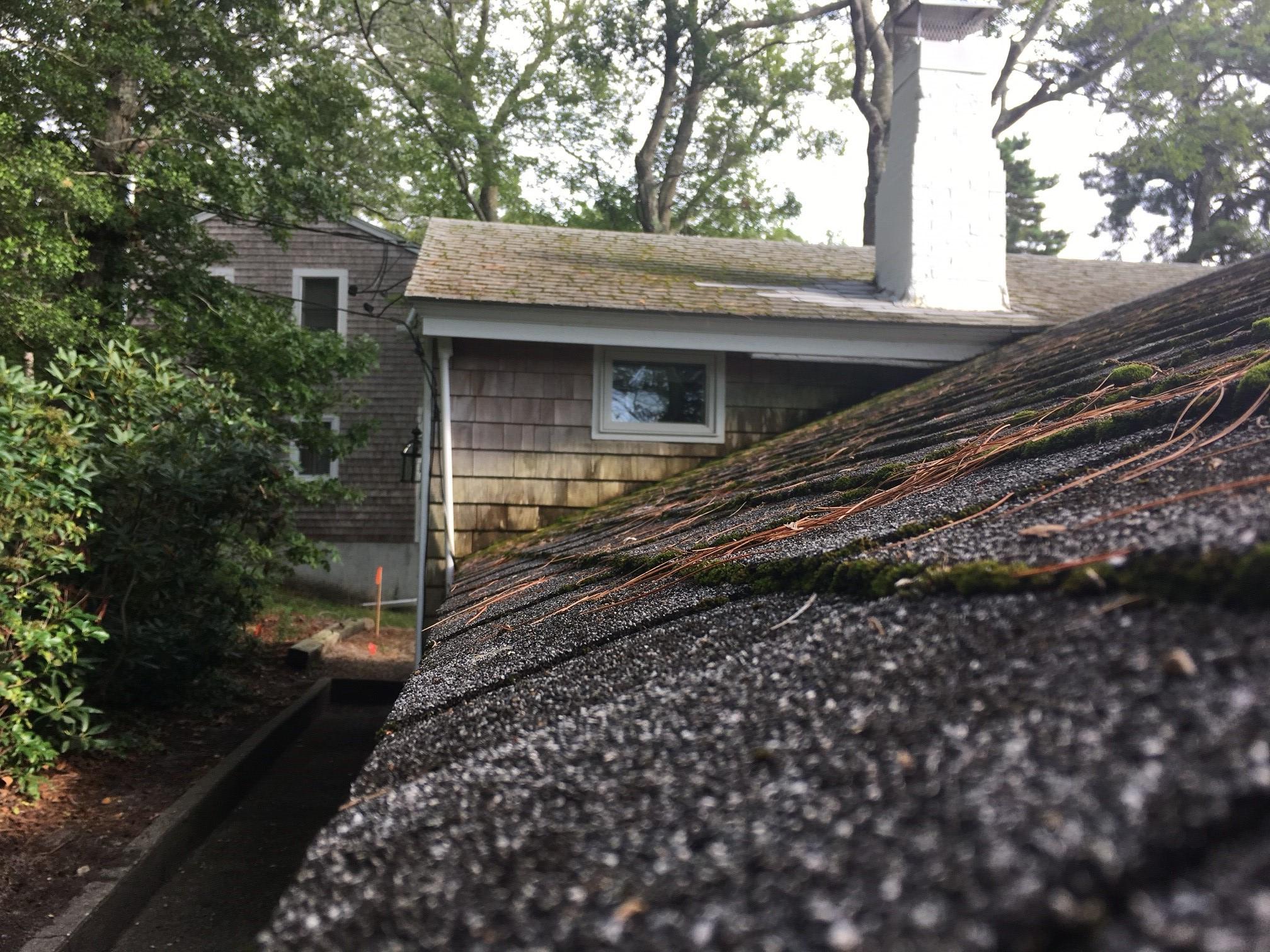 Vertex Hail Damage Roofing Membranes Claims 2 Vertex